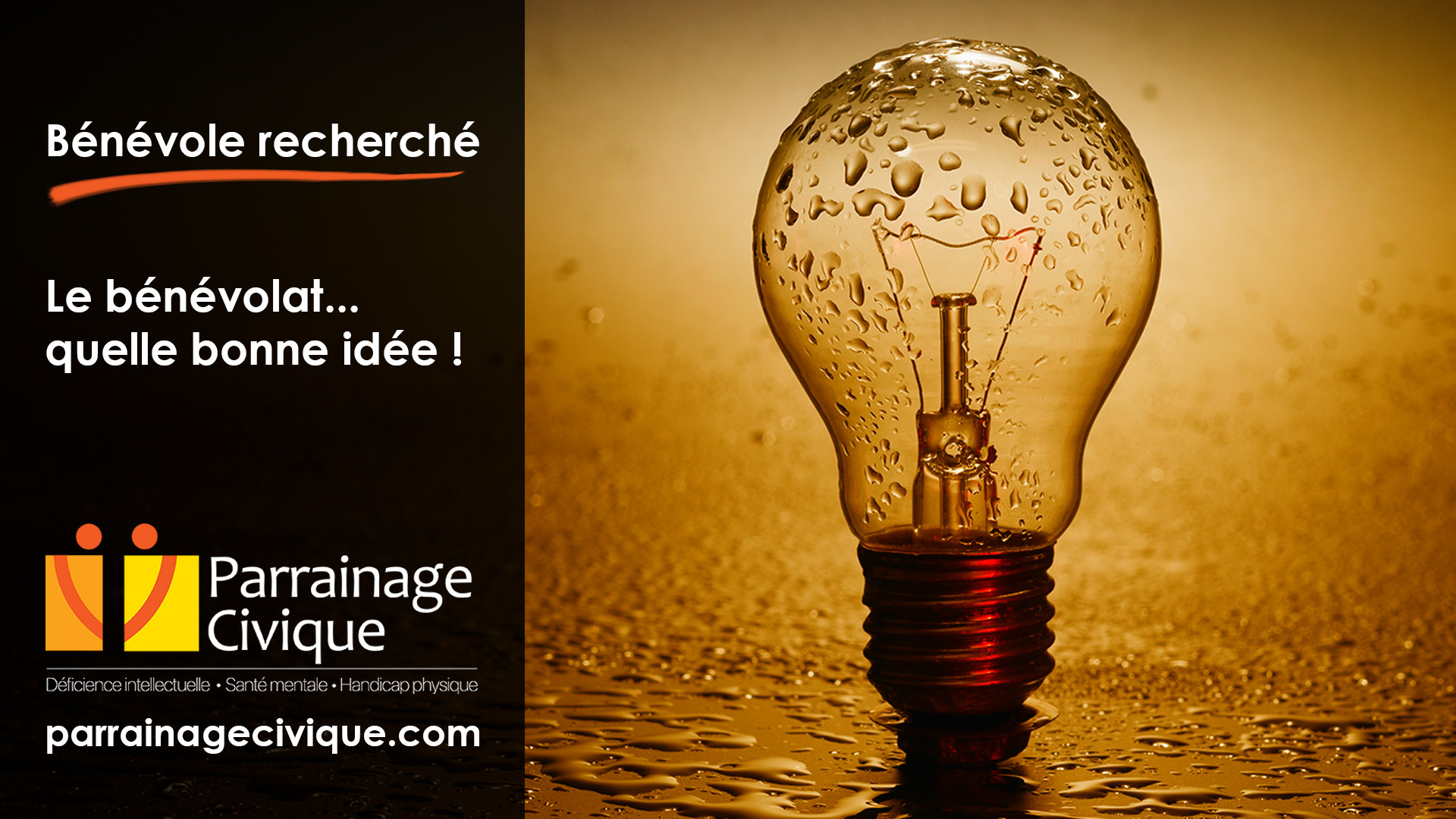 Benevole-recherche-07